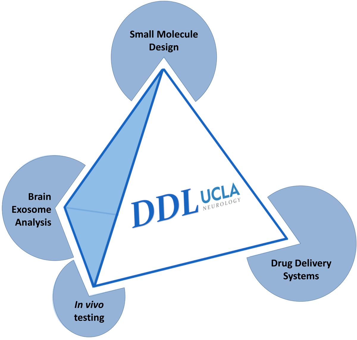 Drug Discovery Lab Process
